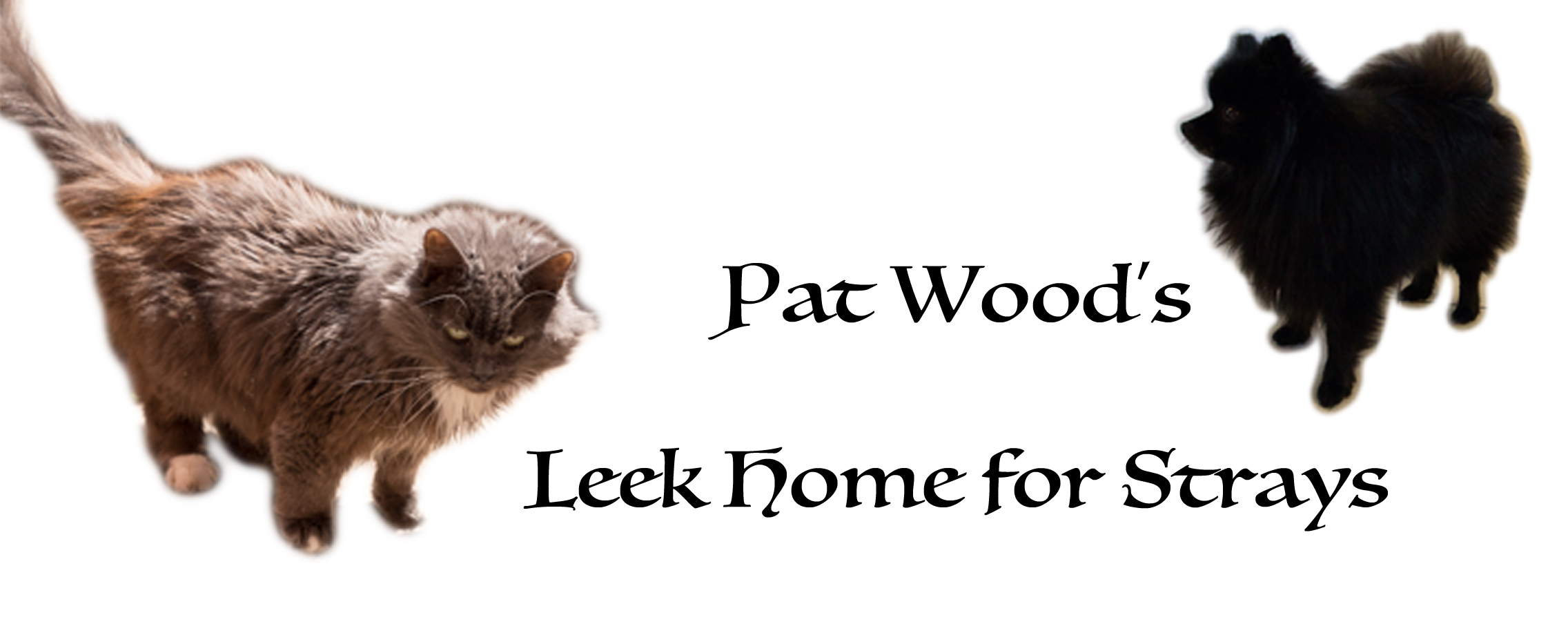 founded by Pat wood m.b.e.